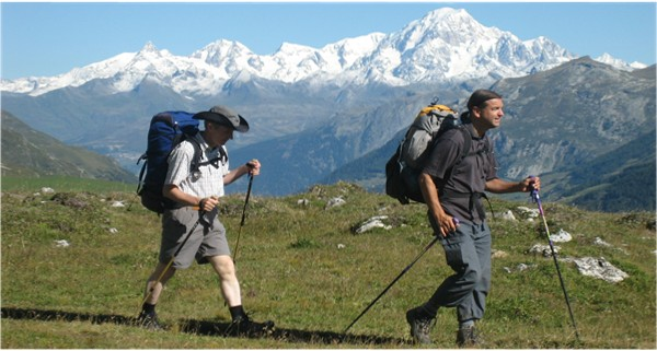 Christmas gift ideas for your dad: Trekking_Pole_600